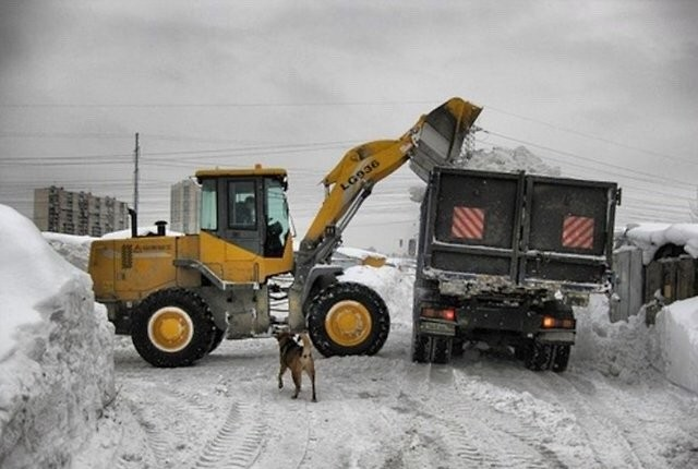 Уборка снега, услуги фронтального погрузчика почис - Кемерово, цены, предложения специалистов